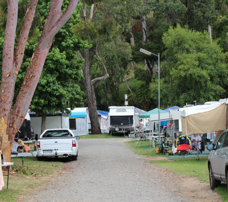 Leafy campsites at the Kia Ora park. Ask our friendly staff about finding the perfect campsite for your holiday.