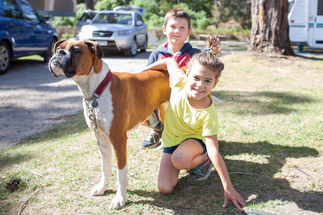 Dog Friendly Campsites - Lorne Foreshore Caravan Park